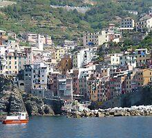 Riomaggiore (Cinque Terre) by presbi