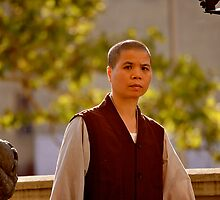 Buddhist Nun or Sangha by micpowell