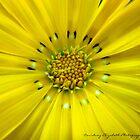 Yellow. by CourtneyE