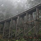 Noojee Trestle Bridge, Victoria by Redneck