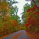 *FALL'S ARRIVAL* by Van Coleman