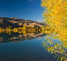 Mackenzie Country Reflections. by Michael Treloar