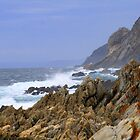 Coastline - Western Cape by Corien
