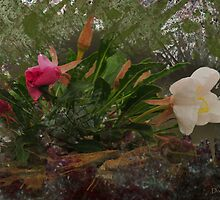 Alkali Lilly, Splats and Textures by Donna Ridgway