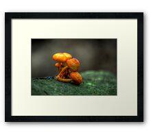 Lean on me on him (hdr) Framed Print