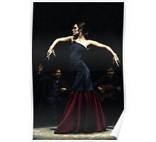 Encantado por Flamenco Poster