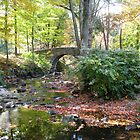 Stone Bridge in Autumn 2 by Matt Ravick