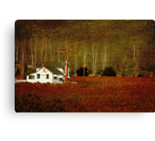 WHITE HOUSE ON A RED CARPET Canvas Print