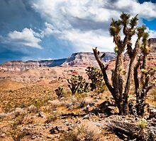 utah landscape by peterwey