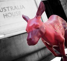 Big Red Kangaroo by lukefarrugia