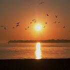 Dawns early flight by cherylc1