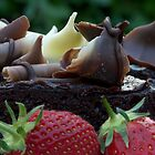 Chocolate Cake and Strawberries by Michael Hadfield