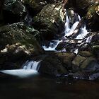 Babbling Falls - Springbrook by WantedImages