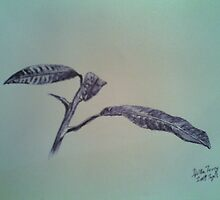 Leaves (Ink and Pen) by tugis