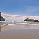 Wharareki Beach, New Zealand by SusanAdey