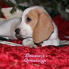 A Snoopy Christmas by hoppmann