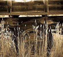 Old Truck 1 by Ilene Baumgardner