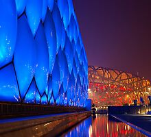 National Aquatics Centre & The Bird's Nest by Douglas M. Paine
