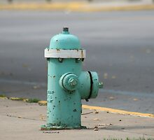 The Hydrant by Dean Mucha