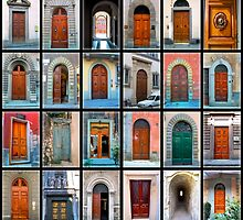 Doors of Florence and Siena by Michael Rubin