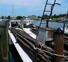 Harbor Life at Knapp's Narrows by Hope Ledebur