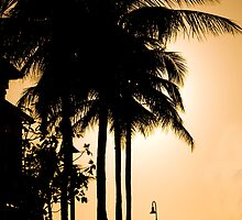 Caribbean Sunset by Alec Good