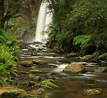 Hopetoun Falls by Tony Middleton