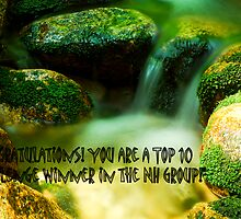 Nh group Banner Challenge by RonSparks