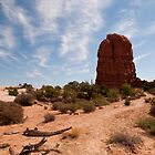 Rock formation - Arches NP Utah by Rob Schoon