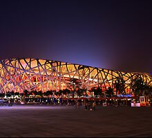 Beijing's Bird Nest Stadium - South side by Douglas M. Paine