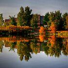 Autumn on Lake Devonian by Larry Trupp