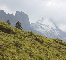 The Eiger by mjdennison