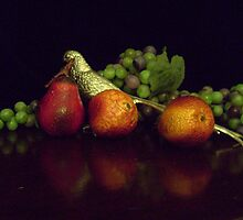 Silver Pheasant with Fruit by suzannem73