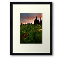 Paintbrush Sunset Framed Print