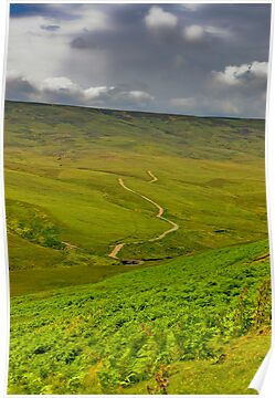 The Long Winding Road by Trevor Kersley