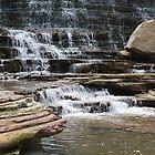 Waterfall Seasons by deb cole