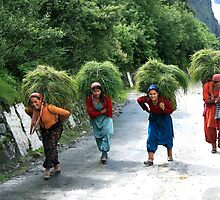 The women of Garhwal Himalaya by RajeevKashyap
