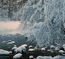 MERCED RIVER,WINTER by Chuck Wickham