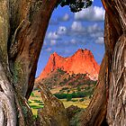 Garden of the Gods / Morning Parallel's by Mark Bolen