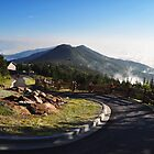 View from Mount Mitchell by MikeJagendorf
