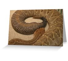 Rattle Greeting Card