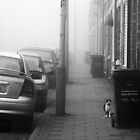Foggy Morning on Collection Day by James  Leader