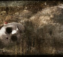 Forgotten by michaelmalthe