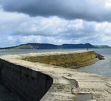 The Cobb, Lyme regis by Mike Paget