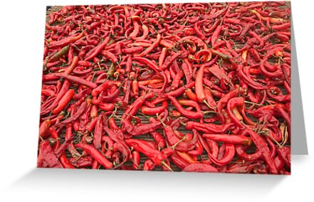 Chili Peppers - Andong, South Korea by Alex Zuccarelli