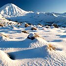 Mount Ngauruhoe,Tongariro National Park 7 by Paul Mercer