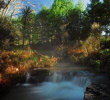 Kerosine creek thermal stream, Rotorua by Paul Mercer