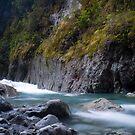 West coast river by Paul Mercer