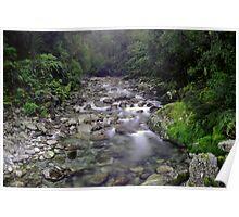 Small stream near the Cascade, South Westland Poster