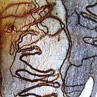 Natures Grafitti Artists by largo